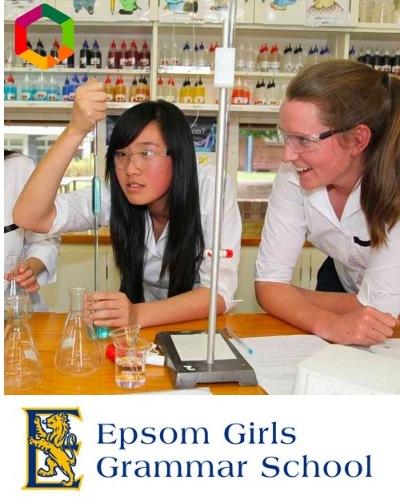 scuola superiore in new zeland
